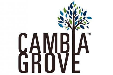 Lunch & Learn and Launch of Cambia Grove's TRAILS Competition